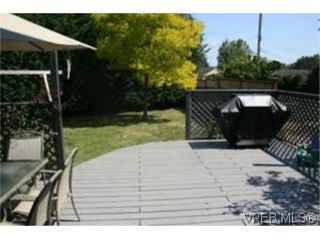 Photo 9: 4261 Panorama Pl in VICTORIA: SE Lake Hill Single Family Detached for sale (Saanich East)  : MLS®# 553505
