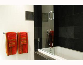 """Photo 8: 307 53 WEST HASTINGS Street in Vancouver: Downtown VW Condo for sale in """"PARIS ANNEX"""" (Vancouver West)  : MLS®# V749072"""