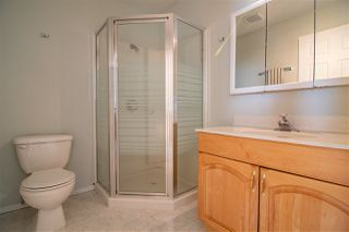 Photo 28: 41238 Feltham Drive Road: Rural Stettler County House for sale : MLS®# E4176732