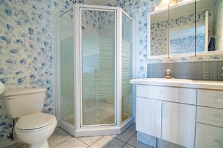 Photo 25: 41238 Feltham Drive Road: Rural Stettler County House for sale : MLS®# E4176732