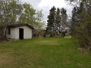 Photo 46: 43 CARLETON Drive: Rural Sturgeon County House for sale : MLS®# E4193328