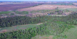 Photo 4: 43 CARLETON Drive: Rural Sturgeon County House for sale : MLS®# E4193328