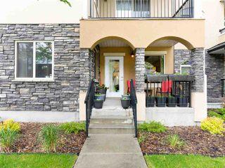 Photo 2: 117 8730 82 Avenue in Edmonton: Zone 18 Condo for sale : MLS®# E4199096