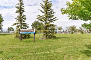 Photo 41: 10868 21 Avenue in Edmonton: Zone 16 House for sale : MLS®# E4201984