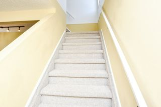Photo 16: 10868 21 Avenue in Edmonton: Zone 16 House for sale : MLS®# E4201984