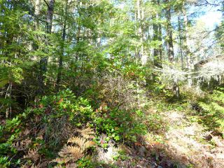 Photo 1:  in Pender Harbour: Pender Harbour Egmont Land for sale (Sunshine Coast)  : MLS®# R2414999