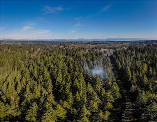 Photo 8: Lot G Dohm Rd in : CV Merville Black Creek Land for sale (Comox Valley)  : MLS®# 854437