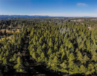 Photo 10: Lot G Dohm Rd in : CV Merville Black Creek Land for sale (Comox Valley)  : MLS®# 854437