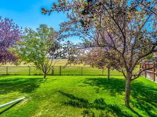 Photo 38: 52 Cranfield Place SE in Calgary: Cranston Detached for sale : MLS®# A1041860