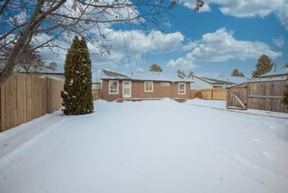Photo 24: 8823 130A Avenue in Edmonton: Zone 02 House for sale : MLS®# E4221031