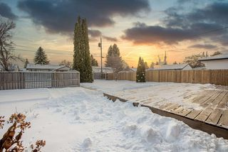 Photo 25: 8823 130A Avenue in Edmonton: Zone 02 House for sale : MLS®# E4221031
