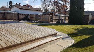 Photo 27: 8823 130A Avenue in Edmonton: Zone 02 House for sale : MLS®# E4221031