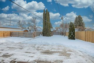 Photo 23: 8823 130A Avenue in Edmonton: Zone 02 House for sale : MLS®# E4221031