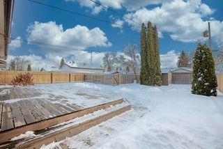 Photo 22: 8823 130A Avenue in Edmonton: Zone 02 House for sale : MLS®# E4221031