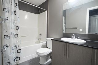 Photo 9: 4303 5305 32 Avenue SW in Calgary: Glenbrook Apartment for sale : MLS®# A1054789