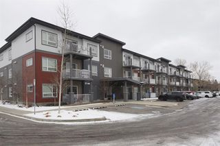 Photo 13: 4303 5305 32 Avenue SW in Calgary: Glenbrook Apartment for sale : MLS®# A1054789