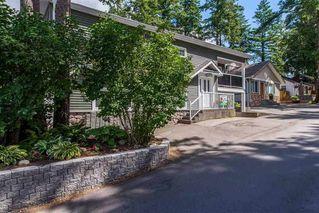 "Photo 4: 243 FIRST Avenue: Cultus Lake House for sale in ""Cultus Lake"" : MLS®# R2388677"