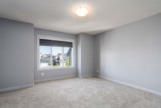 Photo 15: 4046 ALEXANDER Way in Edmonton: Zone 55 House for sale : MLS®# E4214235