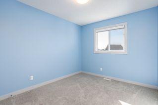 Photo 22: 4046 ALEXANDER Way in Edmonton: Zone 55 House for sale : MLS®# E4214235