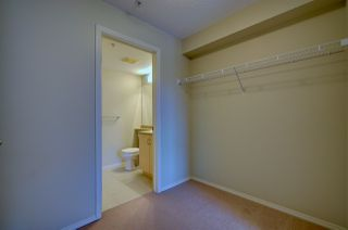 Photo 5: 304, 17011 67 Avenue NW: Edmonton Condo for rent