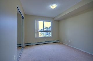 Photo 9: 304, 17011 67 Avenue NW: Edmonton Condo for rent
