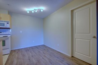 Photo 3: 304, 17011 67 Avenue NW: Edmonton Condo for rent
