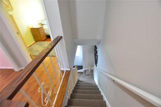 Photo 43: 4039 Magdelin St in : SE Gordon Head Half Duplex for sale (Saanich East)  : MLS®# 858974