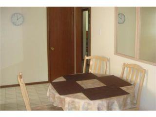 Photo 7: 53 Nichol Avenue in WINNIPEG: St Vital Residential for sale (South East Winnipeg)  : MLS®# 1010255