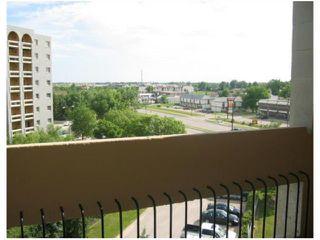 Photo 3: 163 3000 PEMBINA Highway in WINNIPEG: Fort Garry / Whyte Ridge / St Norbert Condominium for sale (South Winnipeg)  : MLS®# 2908534