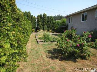 Photo 19: 7990 East Saanich Rd in SAANICHTON: CS Saanichton House for sale (Central Saanich)  : MLS®# 511308
