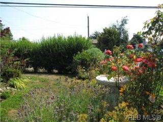 Photo 20: 7990 East Saanich Rd in SAANICHTON: CS Saanichton House for sale (Central Saanich)  : MLS®# 511308