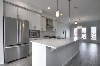 Photo 35: 212 LUCAS Manor NW in Calgary: Livingston Detached for sale : MLS®# C4288986