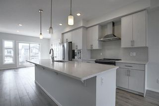 Photo 36: 212 LUCAS Manor NW in Calgary: Livingston Detached for sale : MLS®# C4288986