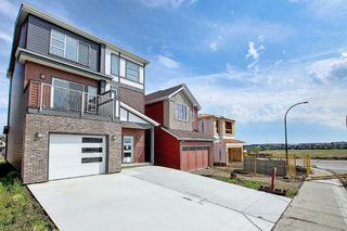 Photo 45: 212 LUCAS Manor NW in Calgary: Livingston Detached for sale : MLS®# C4288986