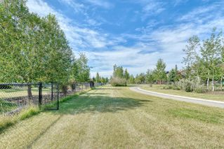 Photo 46: 19 CIMARRON ESTATES Link: Okotoks Detached for sale : MLS®# A1023645
