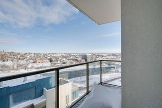 Photo 19: 1301 325 3 Street SE in Calgary: Downtown East Village Apartment for sale : MLS®# A1056268