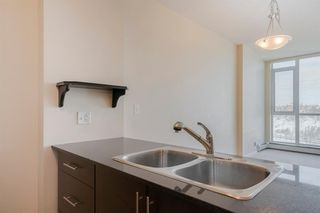 Photo 17: 1301 325 3 Street SE in Calgary: Downtown East Village Apartment for sale : MLS®# A1056268