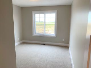 Photo 19: 3061 Carpenter Landing in Edmonton: Zone 55 House for sale : MLS®# E4171410