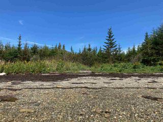 Photo 7: 202 Bakers Road in Marie Joseph: 303-Guysborough County Residential for sale (Highland Region)  : MLS®# 202019034