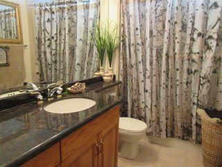 Photo 16: 26 EASTCOTT Drive: St. Albert House for sale : MLS®# E4223050