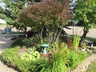 Photo 48: 26 EASTCOTT Drive: St. Albert House for sale : MLS®# E4223050