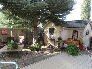 Photo 40: 26 EASTCOTT Drive: St. Albert House for sale : MLS®# E4223050