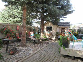 Photo 33: 26 EASTCOTT Drive: St. Albert House for sale : MLS®# E4223050