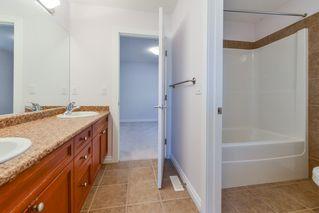 Photo 21: 20735 90 Avenue in Edmonton: Zone 58 House for sale : MLS®# E4176591