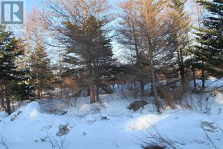 Photo 3: 39 Green Acres in Holyrood: Vacant Land for sale : MLS®# 1210024