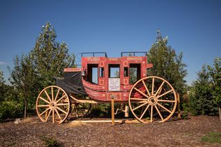 Photo 46: 207 Stage Coach Lane in Rural Rocky View County: Rural Rocky View MD Detached for sale : MLS®# A1039223