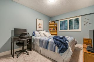Photo 19: 1455 KILMER Road in North Vancouver: Lynn Valley House for sale : MLS®# R2515575