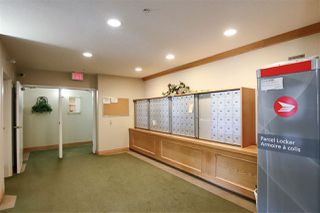 Photo 19: 119 11260 153 Avenue in Edmonton: Zone 27 Condo for sale : MLS®# E4170144