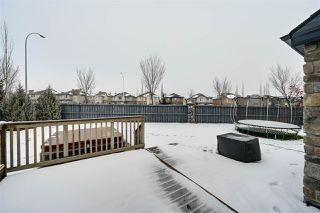 Photo 36: 1247 TREDGER Court in Edmonton: Zone 14 House for sale : MLS®# E4179975