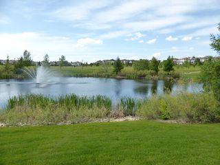 Photo 42: 1247 TREDGER Court in Edmonton: Zone 14 House for sale : MLS®# E4179975